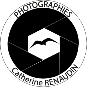 CATHERINE RENAUDIN